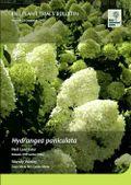 RHS Hydrangea Bulletin