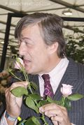 Stephen Fry and the 'Equity' rose at the 2009 Chelsea Flower Show. Stephen-Fry-2978