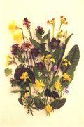 April Flowers postcards from Cards-and-Books.com. Image: ©GardenPhotos.com