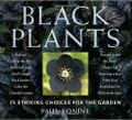 Black Plants by Paul Bonine. Photo ©Timber Press