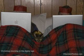 Christmas morning in the digital age. In bed with the laptops. Image ©GardenPhotos.com. Do not reproduce without permission.