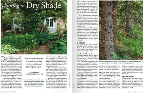 Planting in Dry Shade,The American Gardener,Graham Rice. Layout ©American Horticultural Society