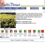 Bulbsdirectnotechinacea